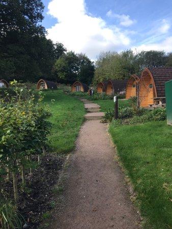 Parkend, UK: Whitemead Forest Park