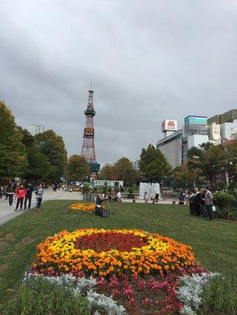 Sapporo, Japan: Fall in Odori Park