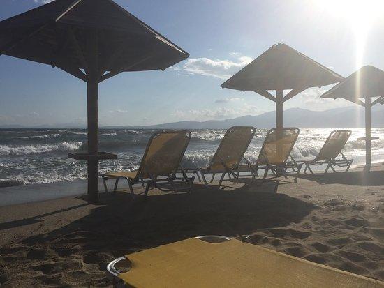Attica, Yunanistan: Superbe plage bordée d'une pinède la plage de sable fin s'enfonce doucement et on a pied sur plu