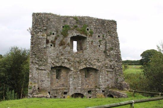 Trim, Irlanda: Ruin at the castle site