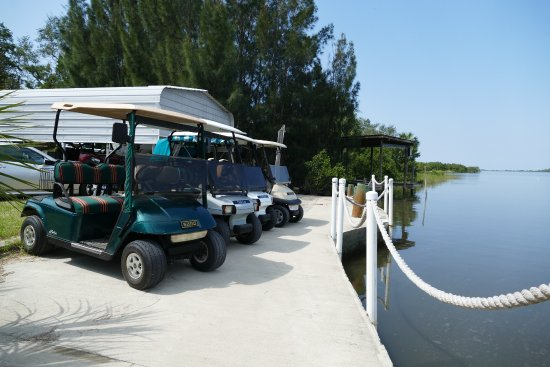 Cedar Key, FL: realy nice clean carts