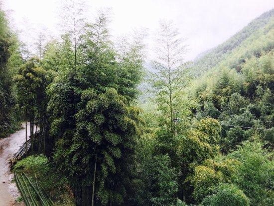 Deqing County, จีน: photo3.jpg