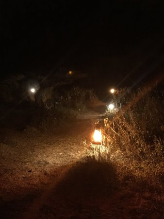 Ang'ata Migration Ndutu Camp: photo2.jpg