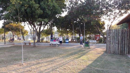 Araras, SP: Passeios com animais