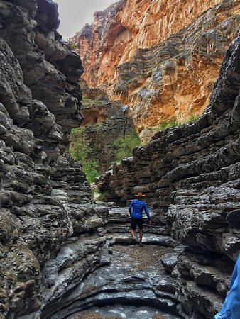 Angell Expeditions: Charlie leading the way along a remote back canyon