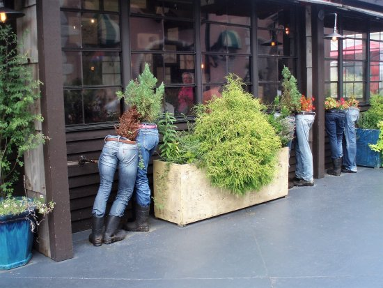 Broadway At The Beach Blue Jean Planters Outside Restaurant