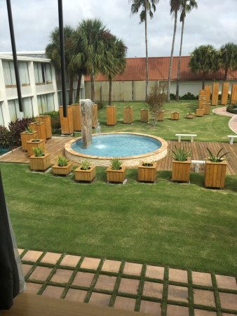 Foto de west wing boutique hotel tampa - Westwing opiniones ...