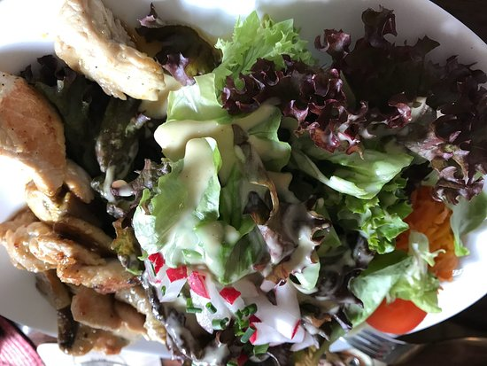Schlossgartenrestaurant Blaues Loch: A beautiful and veeery tasty mixed salad with fried turkey strips and fried mushrooms, home-made