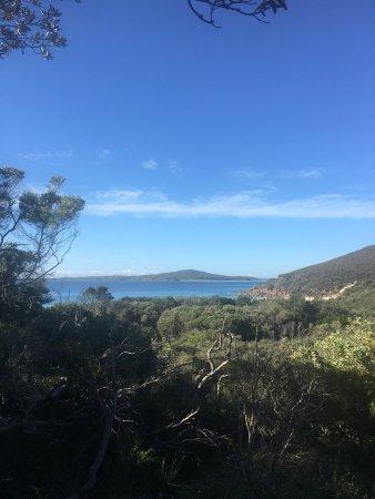 Fingal Bay, Αυστραλία: photo2.jpg