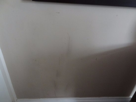 Fraser Suites Queens Gate: Room LG01 - Stains and scratches on the wall