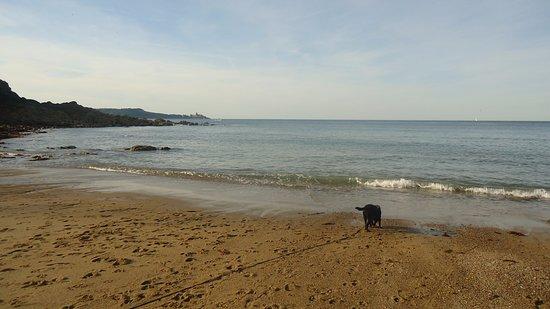 Plage de la Mare: On a une très belle vue de Fort LaLatte, il y a une douche et des wc, plage non surveillée