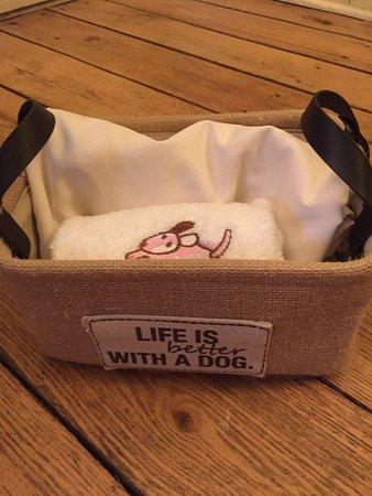 Locust Dale, VA: Doggie basket, a nice touch