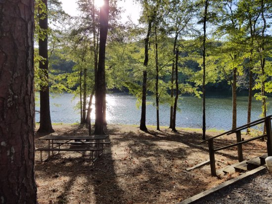 Coker, AL: Our campsite right by the lake