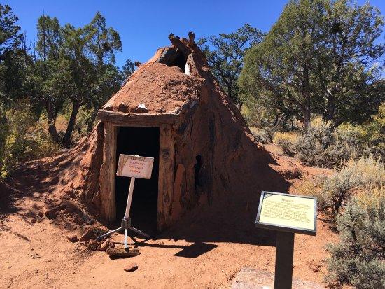 Navajo National Monument : photo1.jpg