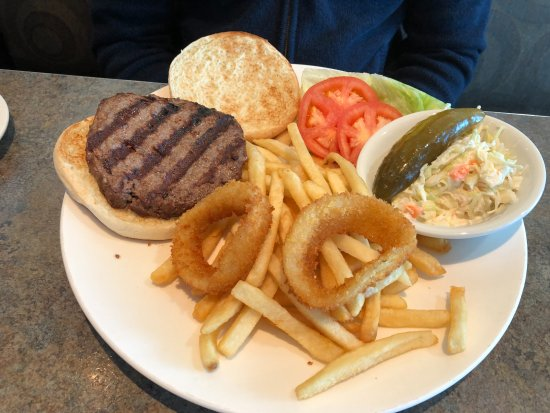 East Meadow, NY: Bison Burger and Fries with onion rings