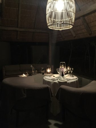 Ngala Private Game Reserve, Sydafrika: photo5.jpg