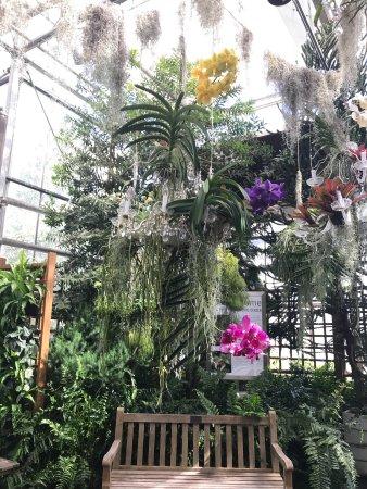 Atlanta Botanical Garden Ga Top Tips Before You Go With Photos Tripadvisor
