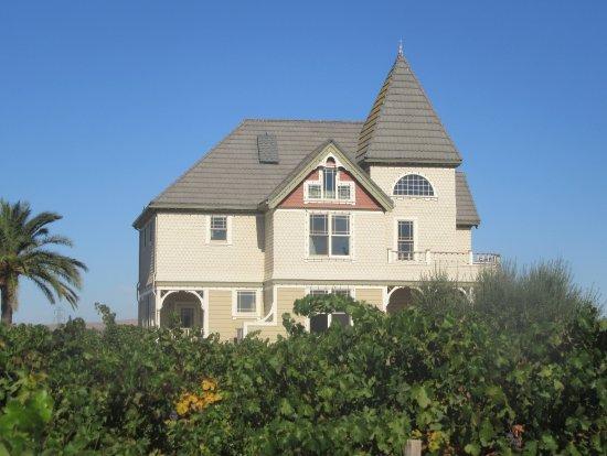 ลิเวอร์โมร์, แคลิฟอร์เนีย: Concannon Vineyard, Livermore, Ca
