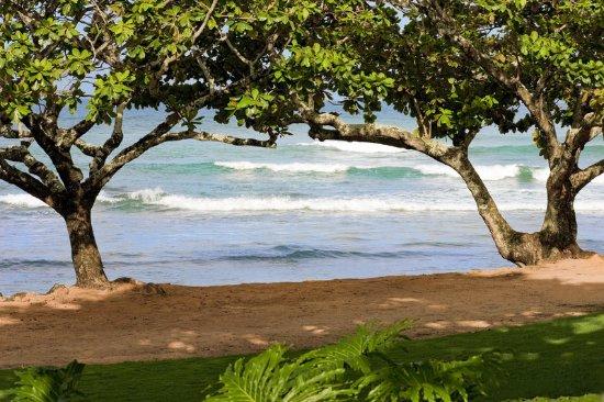 St. Regis Princeville Resort: Lawn Function Space
