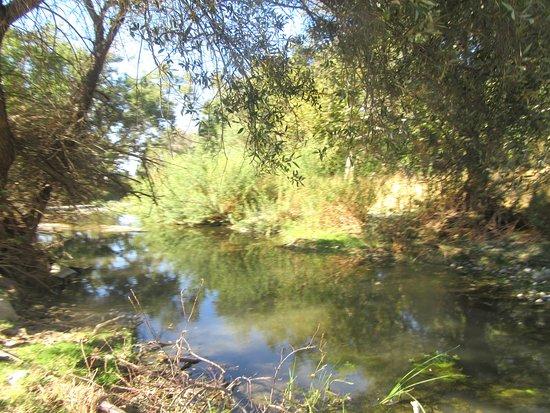 ลิเวอร์โมร์, แคลิฟอร์เนีย: Stream, Livermore Valley, CA