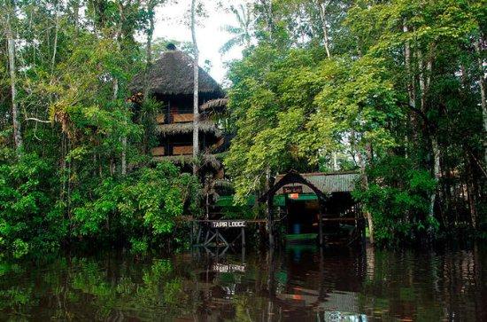 4-Day Ecuador Amazon Jungle Tour...