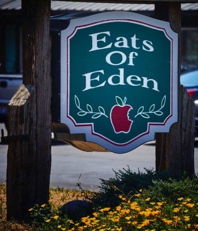Eden照片