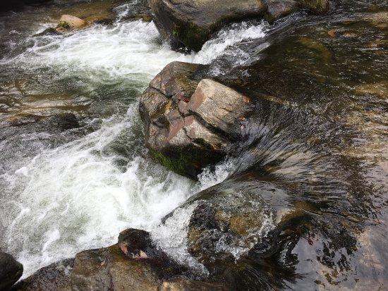 Chimney Rock, NC: photo4.jpg