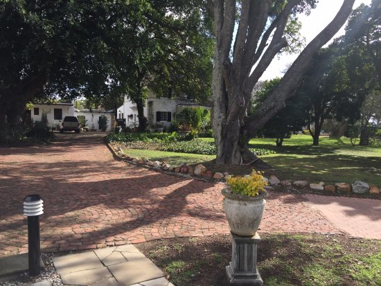 Forest Hall Guest House: Driveway leading to main building showing part of spacious grounds