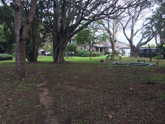 Forest Hall Guest House: Another photo of the grounds surrounding teh hotel facilities
