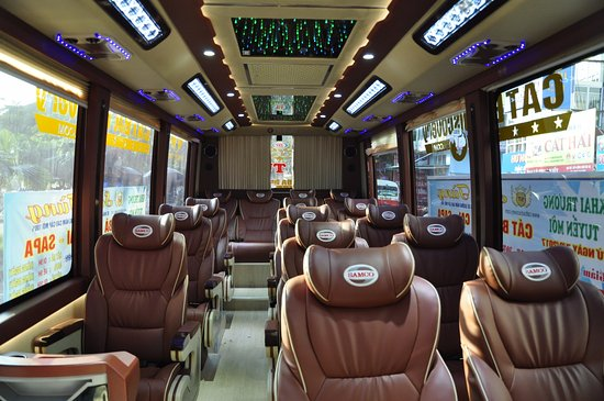 Cat Ba Discovery Bus ( luxury Bus )