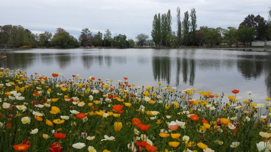Mercure Canberra: 20171008_133323_large.jpg