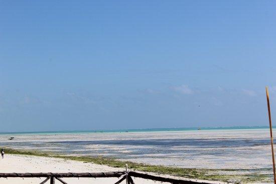 Art Hotel Zanzibar: photo1.jpg