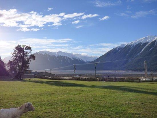 Arthur's Pass National Park, Nieuw-Zeeland: on the farm
