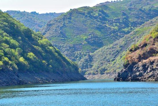 Province of Ourense, Espanha: Paisaje desde el catamarán