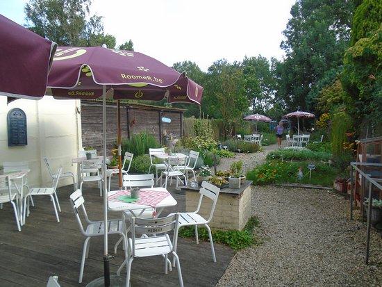 Jabbeke, Belgien: Het terras waar men kan genieten van een thee of ander kruidendrankje