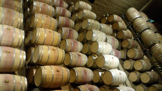 Constantia, África do Sul: wine storage