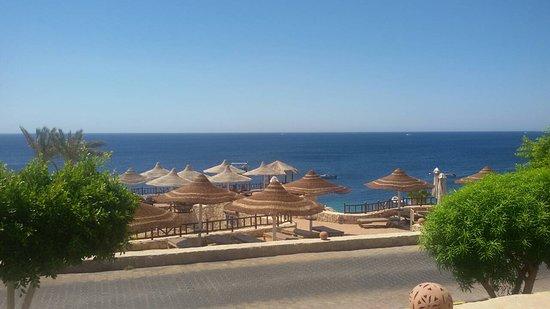 Hilton Sharks Bay Resort: IMG-c7d471bf12c02a1a675fe06424f8ba3c-V_large.jpg