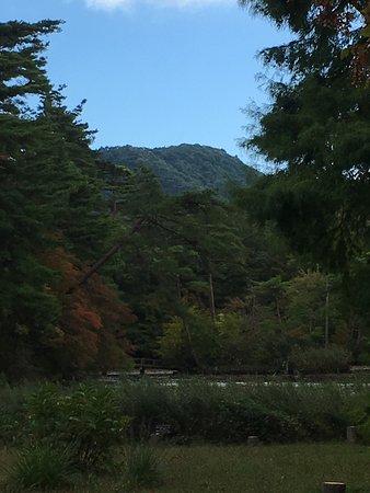 Mt. Rokko: photo1.jpg