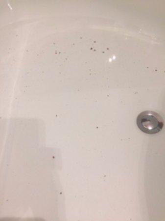 Fearby, UK : Black slime