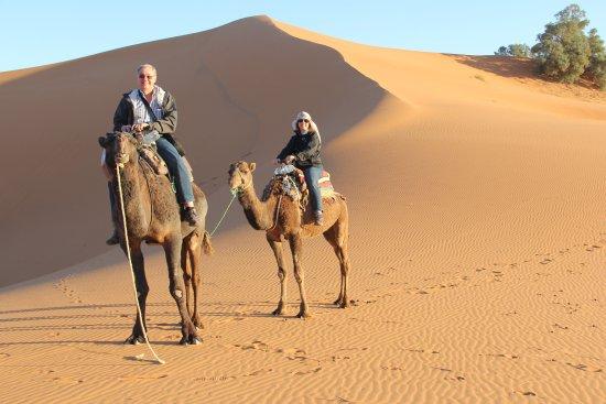 Merzouga Desierto: camel trekking in merzouga desert its the biggest attraction of morocco  thx berberwaymoroccotou