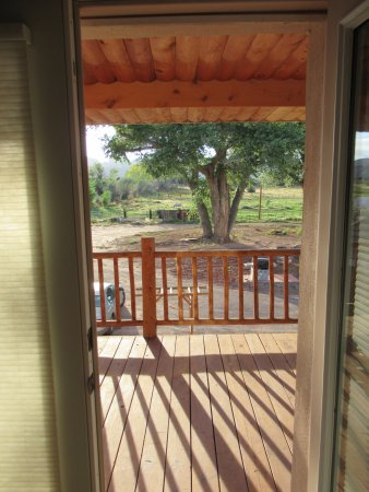 Sunlit Oasis: View from doorway to deck outside of room