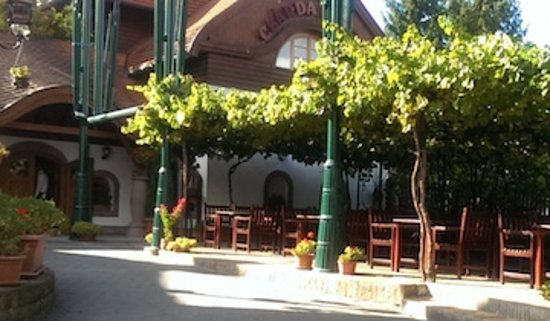 Kulacs Csarda Panzio: Outside eating under the grape arbor.