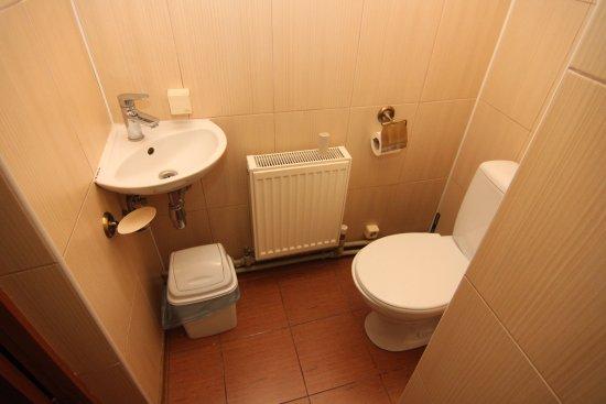 Odessa Oblast, Ukraina: Ванная комната в номерах