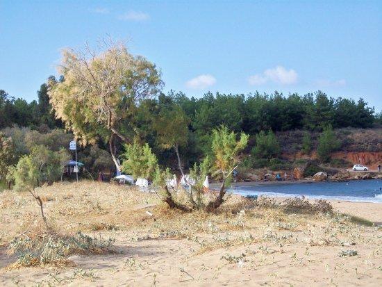 Daratsos, Grekland: View from beach bar at  Akti Beach 🏖