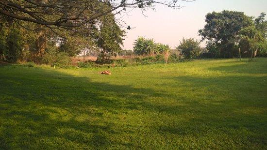 Chirundu, Zambia: Camp-Site