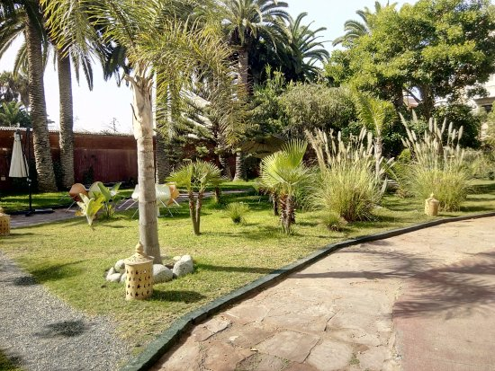 Art Suites El Jadida : Un jolie parc