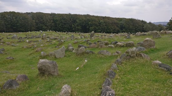 Lindholm Hoeje Museum: A view of some of the burial site. Can feel the history!
