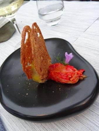 Montner, França: Foie gras mi-cuit maison
