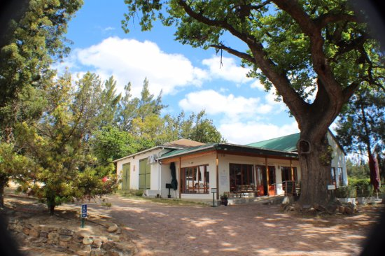 Paarl, South Africa: ...the main building smallish but cos-ii