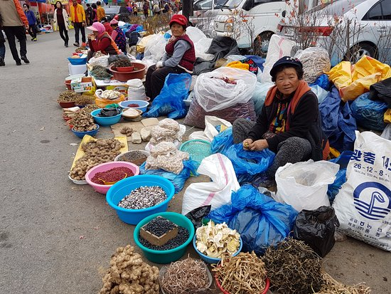 Jeongeup, Corea del Sur: Ginseng, ginseng and more ginseng. They don't speak English so good luck if you try to haggle